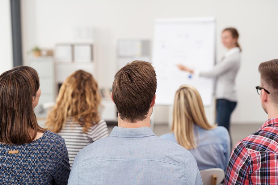 Bases para la contratación laboral de 3 plazas de Formadores/as para el Programa de Aprendizaje a lo Largo de la Vida en el ámbito de la Mancomunidad Campo Arañuelo curso 2019/2020.
